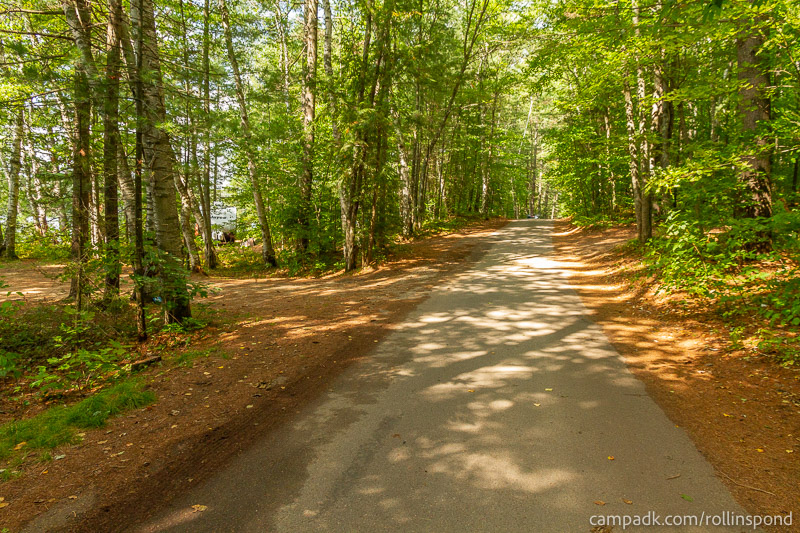 Campsite Photo of Site 16 at Rollins Pond Campground, New York - View Down Road from Campsite