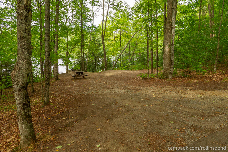 Campsite Photo of Site 50 at Rollins Pond Campground, New York - Looking at Site from Road