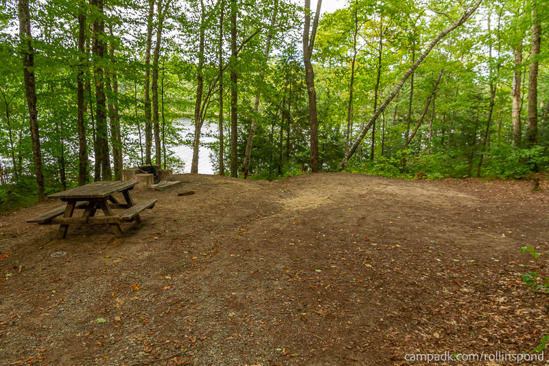Campsite Photo of Site 50 at Rollins Pond Campground, New York - Looking at Site from Part Way In