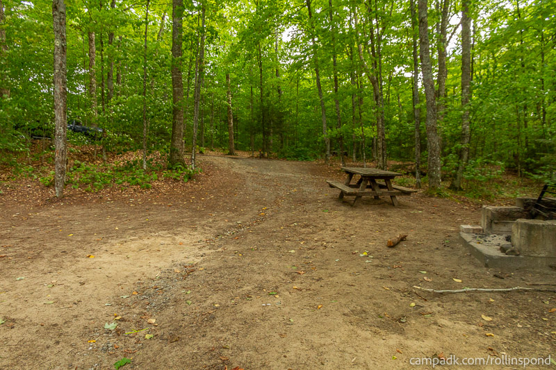 Campsite Photo of Site 50 at Rollins Pond Campground, New York - Looking Back Towards Road
