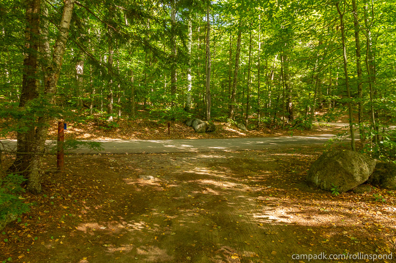 Campsite Photo of Site 8 at Rollins Pond Campground, New York - Looking Back Towards Road