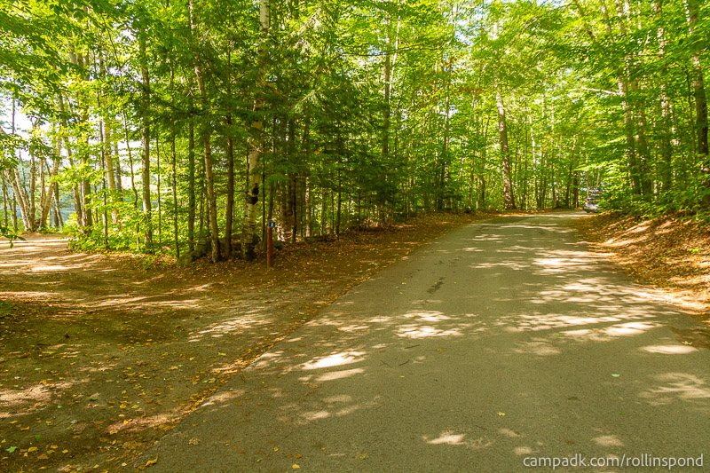 Campsite Photo of Site 8 at Rollins Pond Campground, New York - View Down Road from Campsite