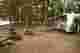 Verona Beach State Park Campsite Photos