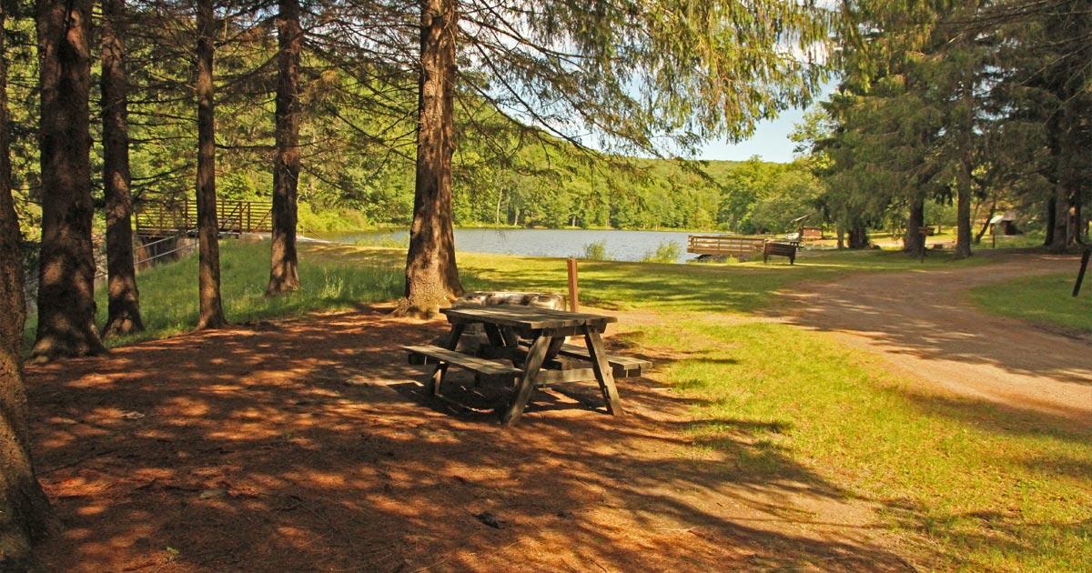 Bear Spring Mountain Campground Campsite Photos - Site 11